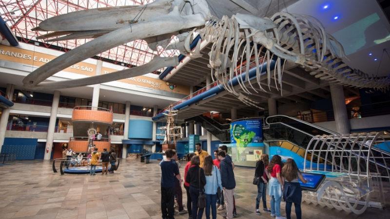 Museu da Ciência e Tecnologia PUCRS